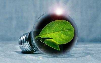Ekstraordinært Innovasjonstilskudd 2020
